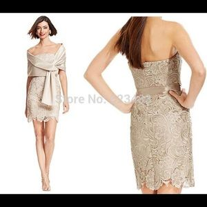 NEW! Adrianna Papell Beige Lace Cocktail Dress